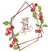Vector Cherry fruits on white background. Green leaf. Leaf plant botanical garden floral foliage. Red and green engraved ink art. Frame border ornament square.