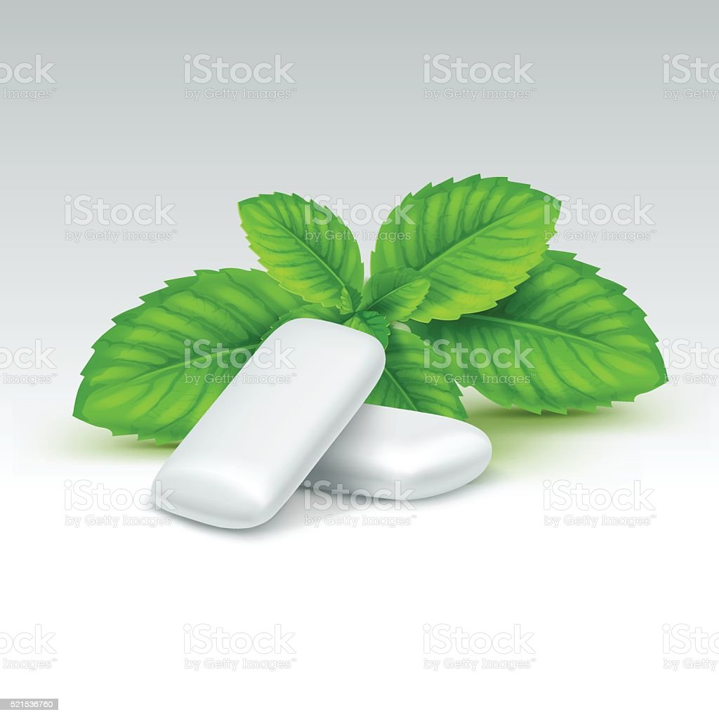 Vector Chewing Gum with Fresh Mint Leaves Isolated vector art illustration
