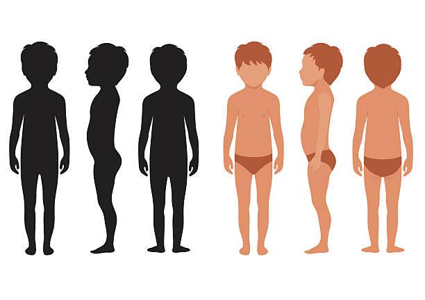 ilustrações de stock, clip art, desenhos animados e ícones de vector criança corpo - tronco nu