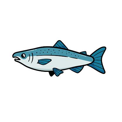Vector Chinook Salmon Cartoon Illustration