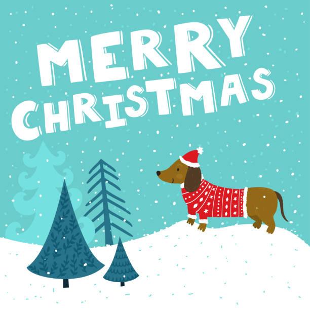 """bildbanksillustrationer, clip art samt tecknat material och ikoner med vektor julkort med söt tax i santa hatt och stickad tröja. holiday bakgrund med handen ritning tecknad figur, vinterlandskap, julgranar och texten """"god jul"""". - tax"""