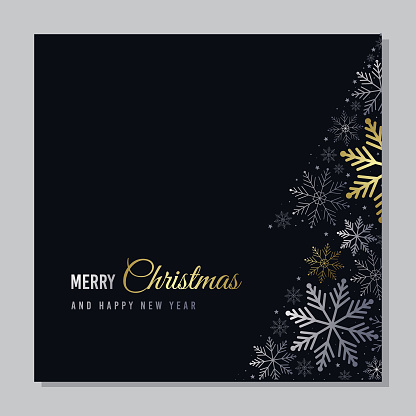 Vector Christmas card with snowflakes. Silver and gold snowflakes on black background