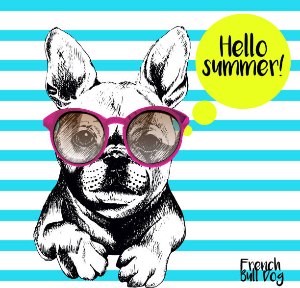 ilustraciones, imágenes clip art, dibujos animados e iconos de stock de vector close of french bulldog wearing the sunglassess. - moda hipster