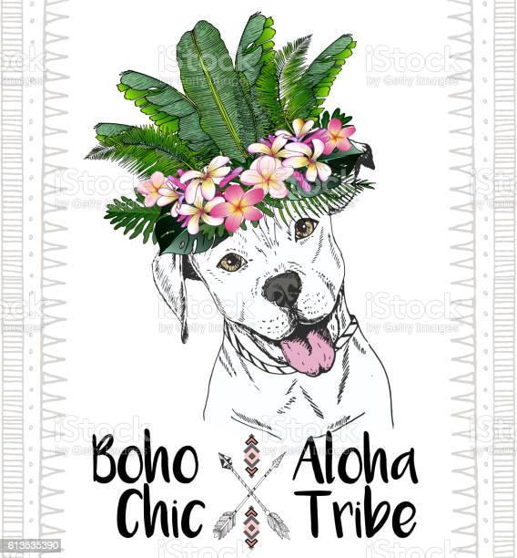 Vector close up portrait of pitbull dog wearing exotic crown vector id613535390?b=1&k=6&m=613535390&s=612x612&h=6rqib4usbpoloxoxzuebv3wlgwzy py9dsbte 7lu6o=