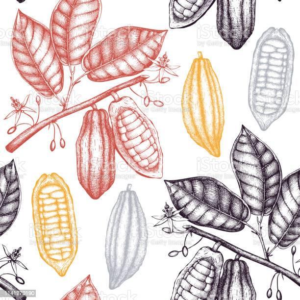 Vector Cacao Patroon Stockvectorkunst en meer beelden van Achtergrond - Thema