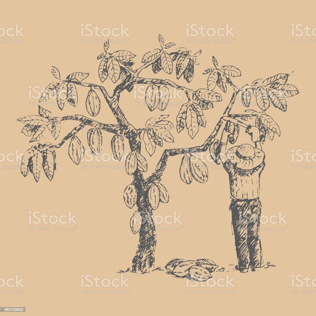 男キャラ農家手描きスケッチ落書き食品チョコレート甘いイラスト