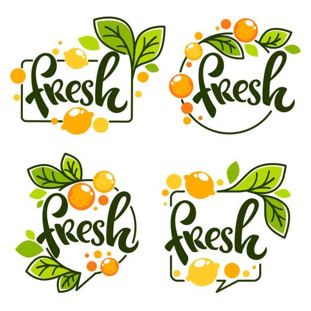 밝은 스티커, 엠 블 럼 아이콘 구성 글자와 레몬과 오렌지 신선한 감귤 류의 주스에 대 한 레이블 벡터 컬렉션 - 신선함 stock illustrations