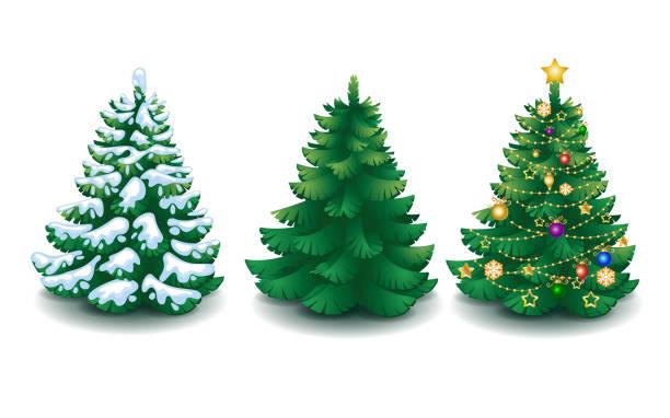 bildbanksillustrationer, clip art samt tecknat material och ikoner med vector insamling av tecknad julgranar - christmas tree