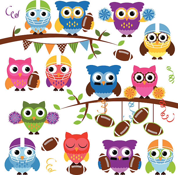 vector collection of cute football or sports themed owls - high school sports stock illustrations, clip art, cartoons, & icons