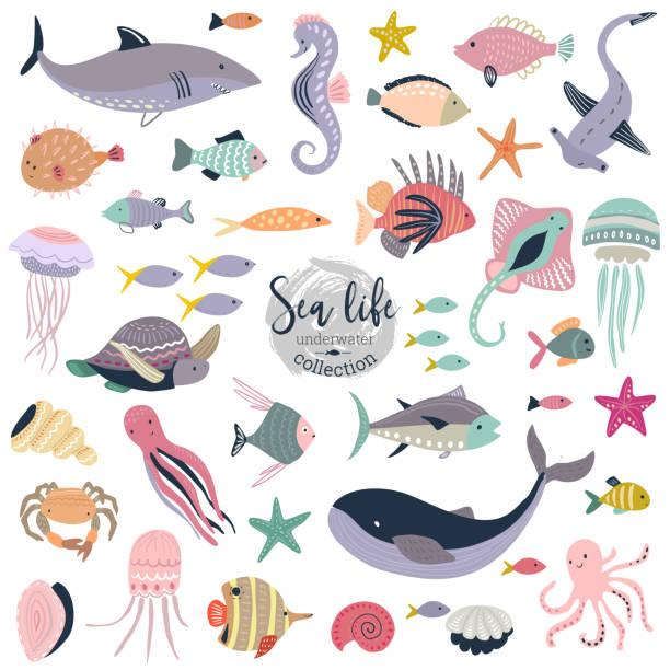 illustrazioni stock, clip art, cartoni animati e icone di tendenza di vector collection of cute underwater animals and fish. - immerse in the stars