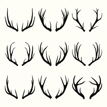 Vector Collection of Deer Horns