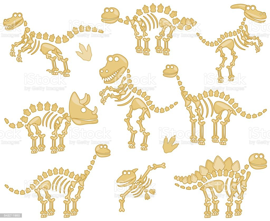 Vector Collection of Dinosaur Fossils or Bones - ilustración de arte vectorial
