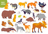 Vector collection of forest animals and birds: bear, fox, hare, owl isolated on white background