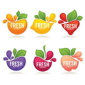 vector collection of fresh stylized fruits and berries, icon, labels, stickers and emblems