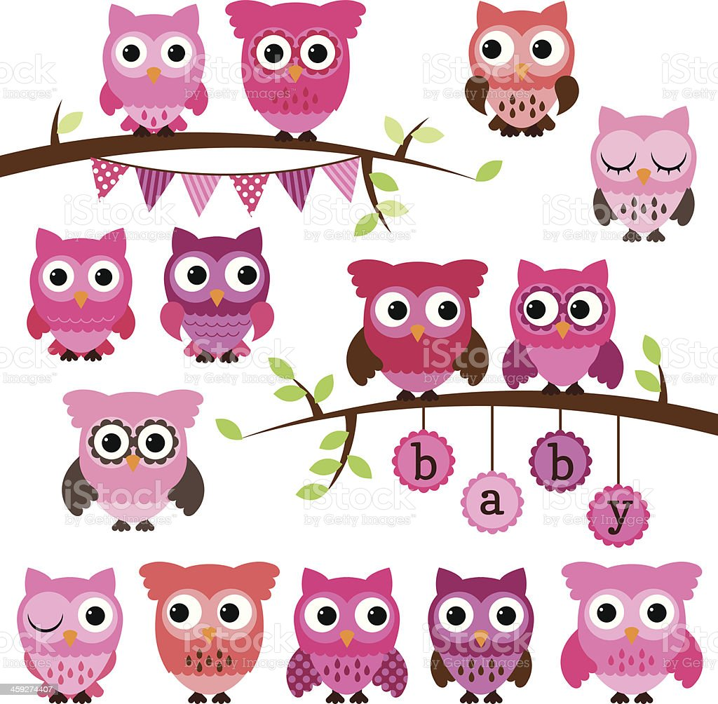 Vector Collection of Girl Baby Shower Themed Owls and Branches vector art illustration