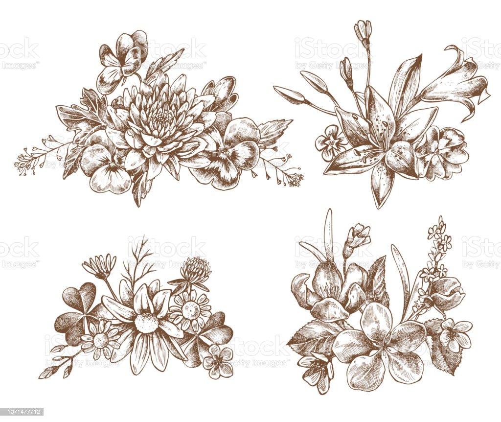 Ilustración de Colección De Vector De Mano Dibujado Flores Otoño y ...