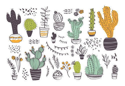 Vector collection of hand drawn different cactus shapes and abstract doodle elements isolated on white background.