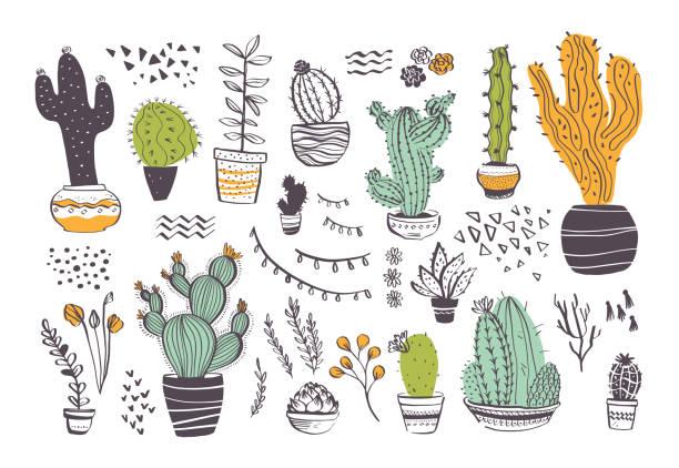 stockillustraties, clipart, cartoons en iconen met vector collectie van hand getrokken verschillende cactus vormen en abstracte doodle geïsoleerde op witte achtergrond. - cactus