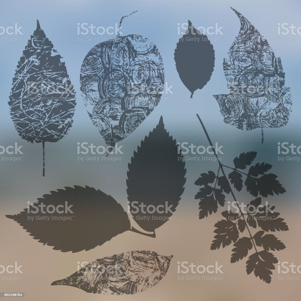 Vector collection of leaf silhouettes, leaves with blurred background, grunge texture vector art illustration