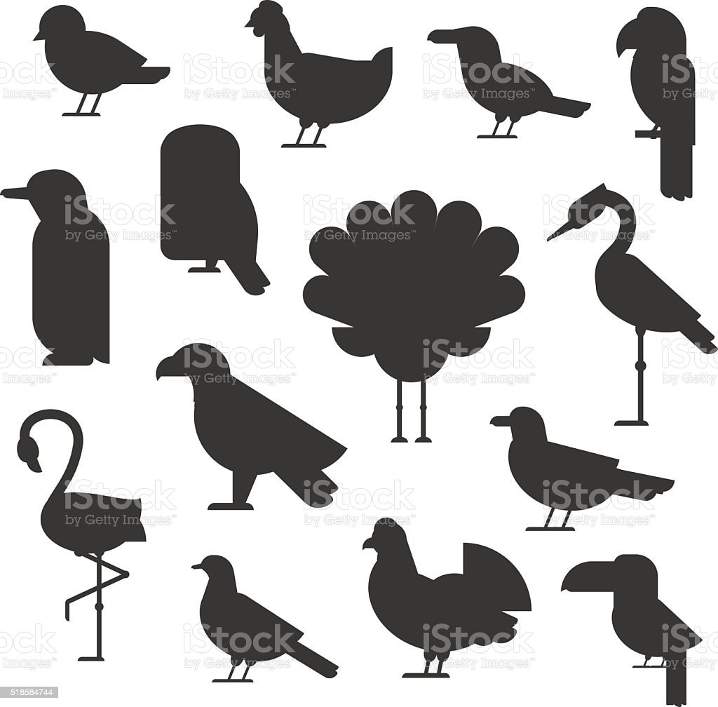 Vector Collection of nature black bird wildlife animal silhouettes vector art illustration
