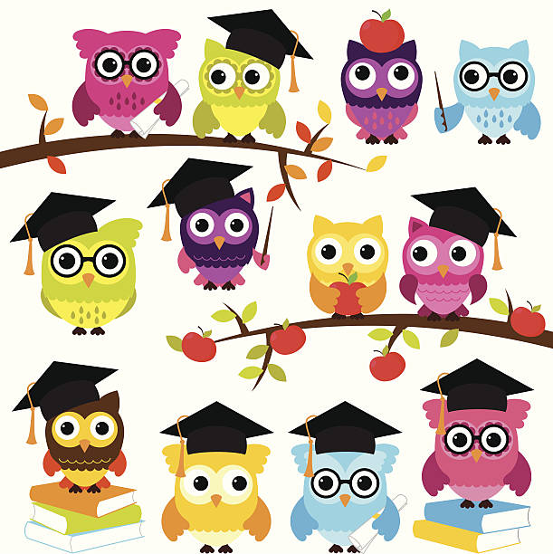 vector collection of school or graduation themed owls - primary school stock illustrations, clip art, cartoons, & icons