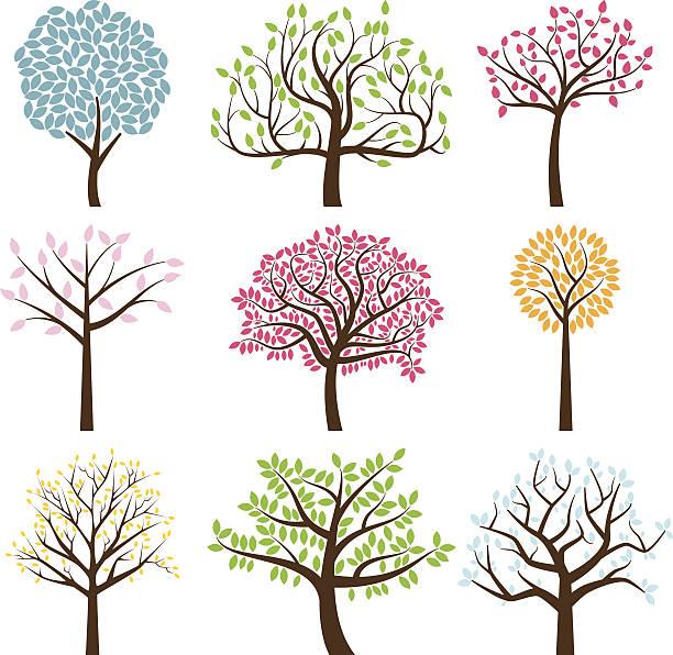 vektor-sammlung von baum silhouetten - stammbäume stock-grafiken, -clipart, -cartoons und -symbole