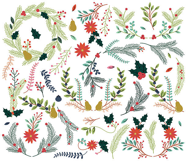 Vector Collection of Vintage Style Hand Drawn Christmas Holiday Florals Vector Collection of Vintage Style Hand Drawn Christmas Holiday Florals. No transparencies or gradients used. Large JPG included. Each element is individually grouped for easy editing. berry fruit stock illustrations
