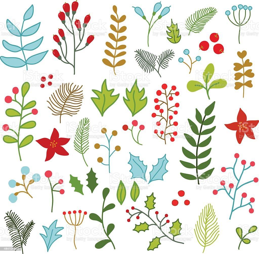 Circuito Vascular : Vector collezione di inverno natale floreali ecircuito fiori