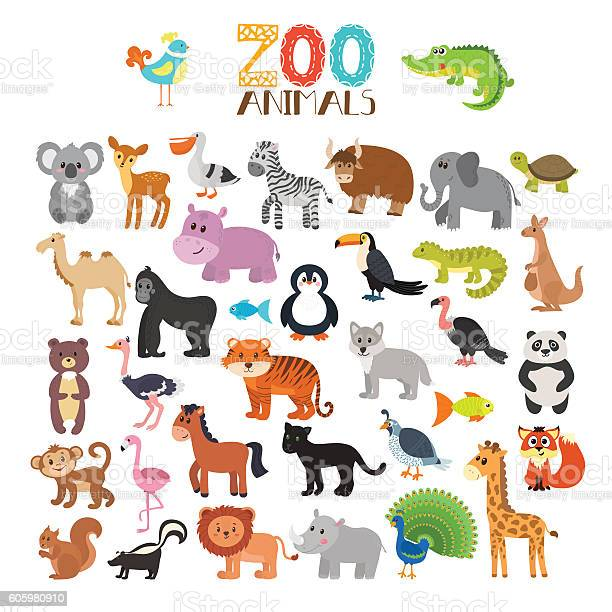 Vector collection of zoo animals set of cute cartoon animals vector id605980910?b=1&k=6&m=605980910&s=612x612&h=va4uuajr51sttimfbnmgtun1llyeoue9ppqwdnadqss=