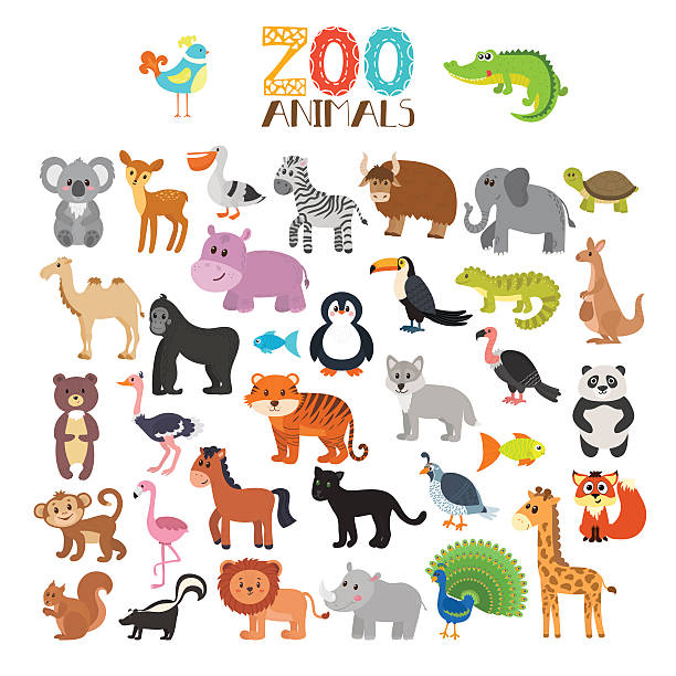 Vector collection of Zoo animals. Set of cute cartoon animals vector art illustration