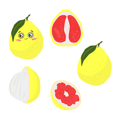 Vector color illustration of a whole and a half pomelo on a white background in a flat style. Bright set for design.