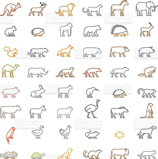Vector color line set of silhouettes of animals vector id547236404?b=1&k=6&m=547236404&s=612x612&h=w9cxkfici bw6zz2zak5y4g33dugmkkhrqddjjg7fko=