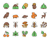 Vector color linear icon set of forest. Outline symbol collection of plants and animals concept. Trees, mountains, owl, wild boar, raccoon, squirrel, mushrooms, acorns, berries and isolated objects