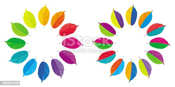 Set of two vector color wheels made from multi-colored leaves