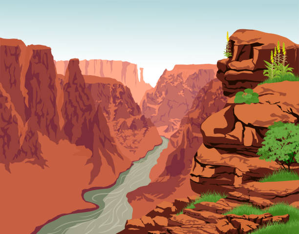 Vector Colorado river in Grand Canyon National Park Vector Colorado river in Grand Canyon National Park cliff stock illustrations
