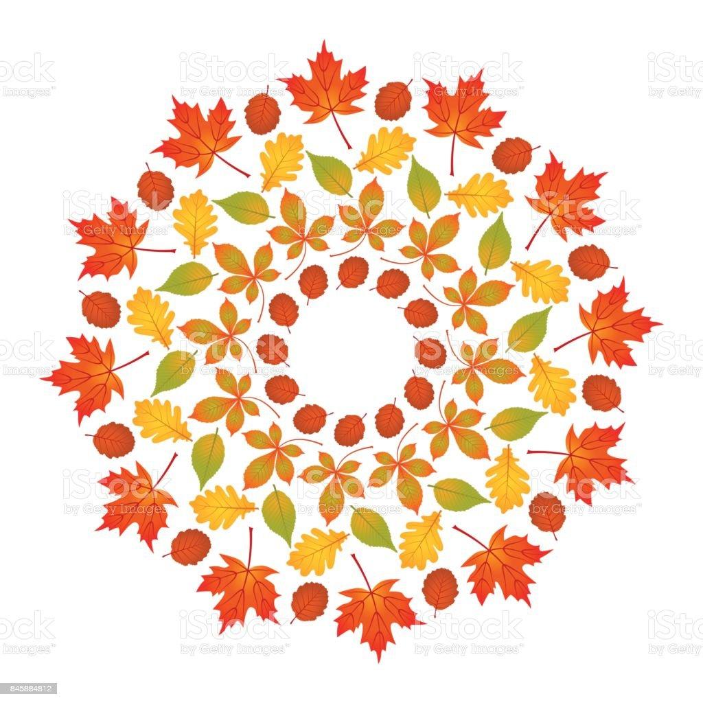 Vektorfarbige Runde Herbst Mandala Mit Blättern Aus Ahorn