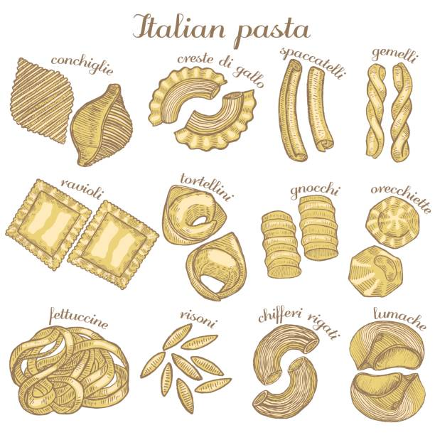 vector colored set of different pasta shapes vector colored set of hand drawn different pasta shapes tortellini stock illustrations