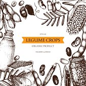 Vector colorful design with ink hand drawn legume crops sketches.