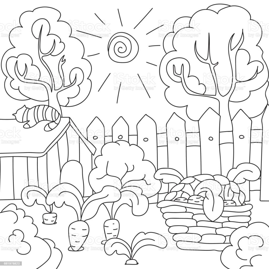 Vector Coloring Book Carrots In The Garden Royalty Free Stock Art