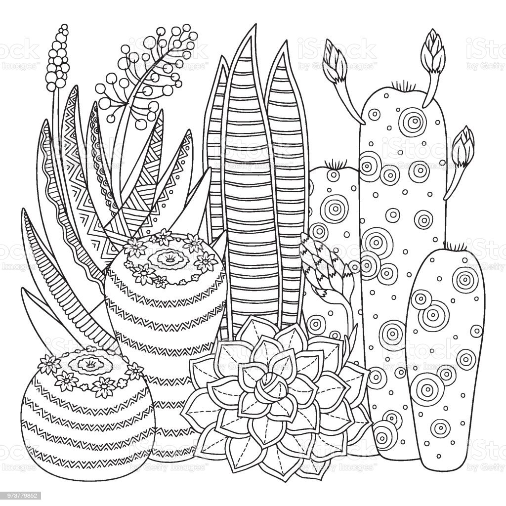 Vector Coloring Page Linear Image On White Background Cute Cactus For Book