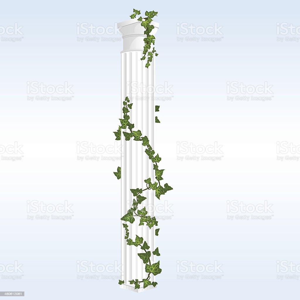 Vector Column with Ivy vector art illustration
