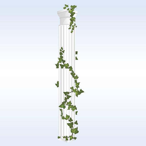 ilustrações de stock, clip art, desenhos animados e ícones de vector coluna com hera - ivy building
