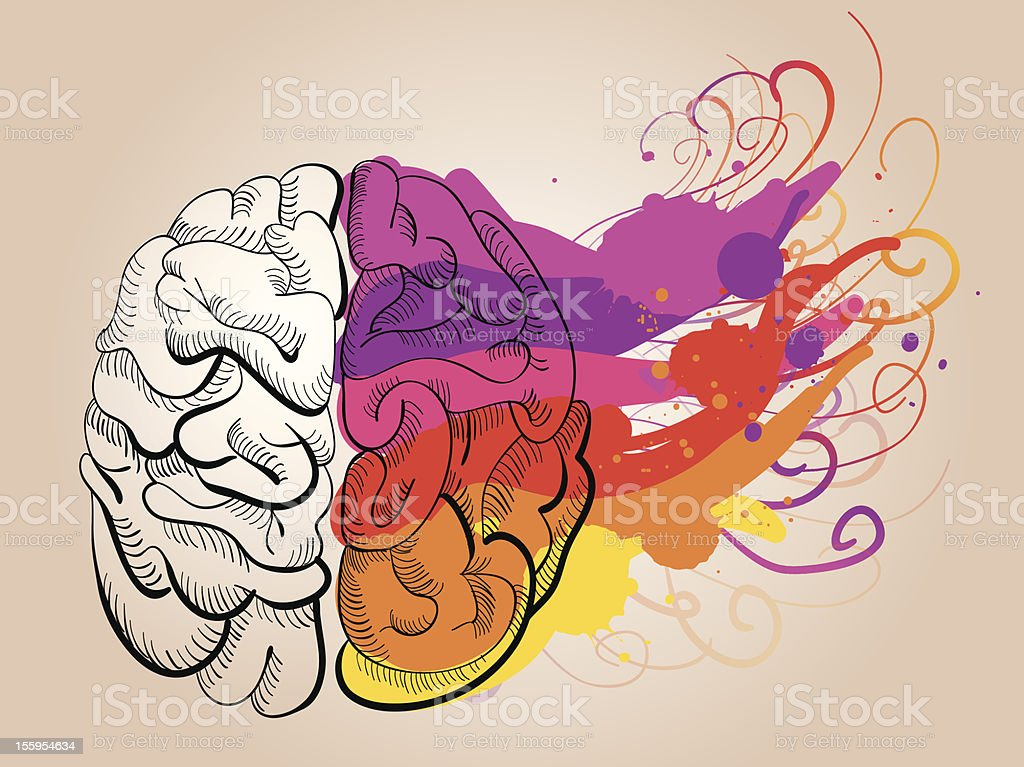 vector concept - creativity and brain royalty-free stock vector art