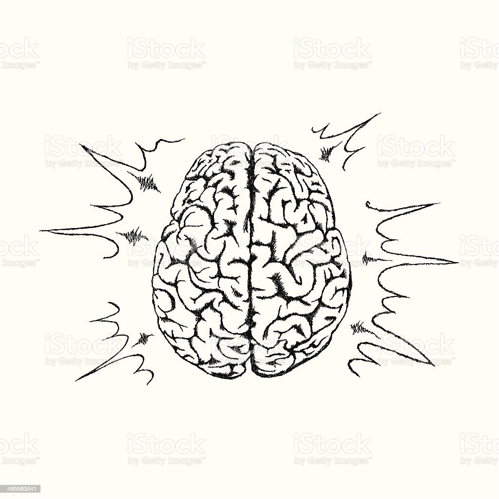 Vector concept of creativity with human brain. vector art illustration