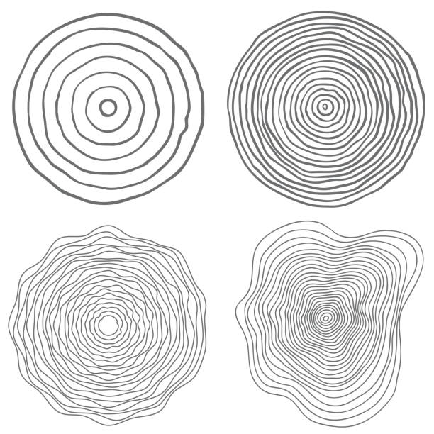 vector conceptual background with tree-rings tree cut stump snag. - wood texture stock illustrations