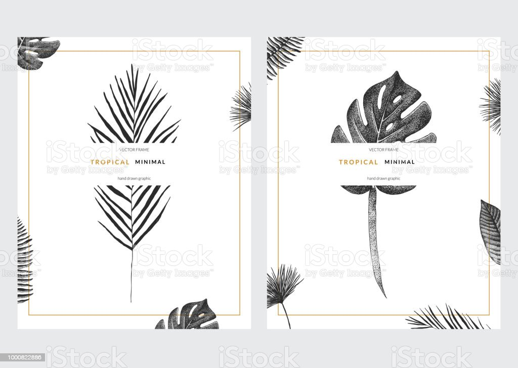 Vector contemporary greeting card set with tropical graphics in vector contemporary greeting card set with tropical graphics in vintage style hand drawn collection of stopboris Gallery
