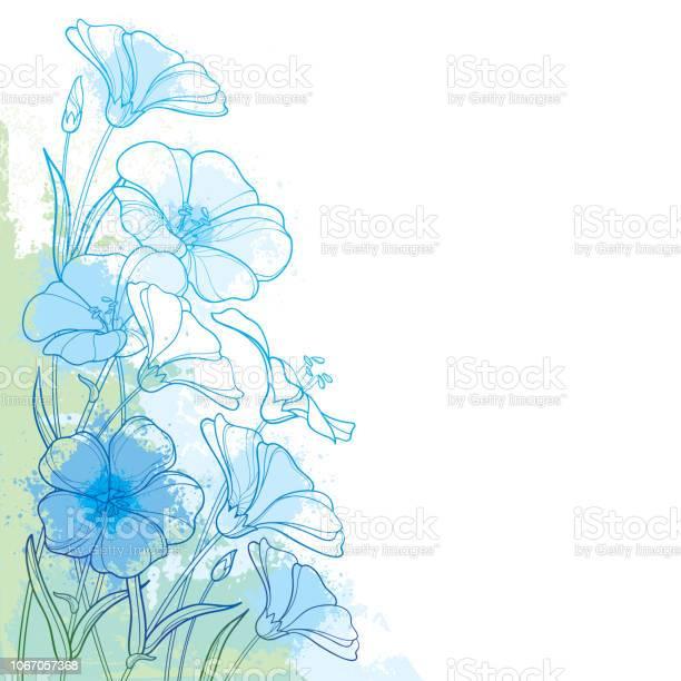 Vector corner bouquet with outline flax plant or linseed or linum vector id1067057368?b=1&k=6&m=1067057368&s=612x612&h=kxb5xa45j t4l3iylgl9crhqodlajpltxywhhgv3c5w=