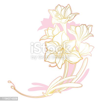 istock Vector corner bunch with outline bulbous Amaryllis or belladonna Lily flower bouquet and leaf in pastel pink and golden isolated on white background. 1194074309