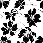 Vector Cosmos floral botanical flowers. Wild spring leaf wildflower isolated element. Black and white engraved ink art. Seamless background pattern. Fabric wallpaper print texture.