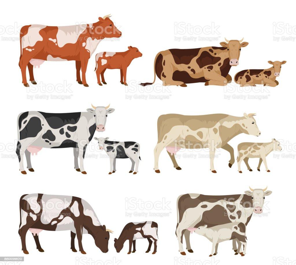 Ilustración de Colección Vaca Y Becerro De Vector y más banco de ...